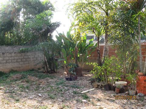 Ayuda para el dise o de un jard n de 160 metros cuadrados for Jardines 300 metros cuadrados