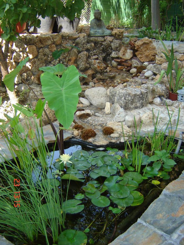 Fotos de mis dos nuevos estanques prefabricados uno for Estanques prefabricados grandes