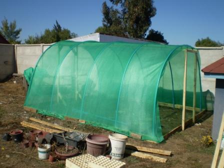 Invernadero para mis rboles for Vivero estructura