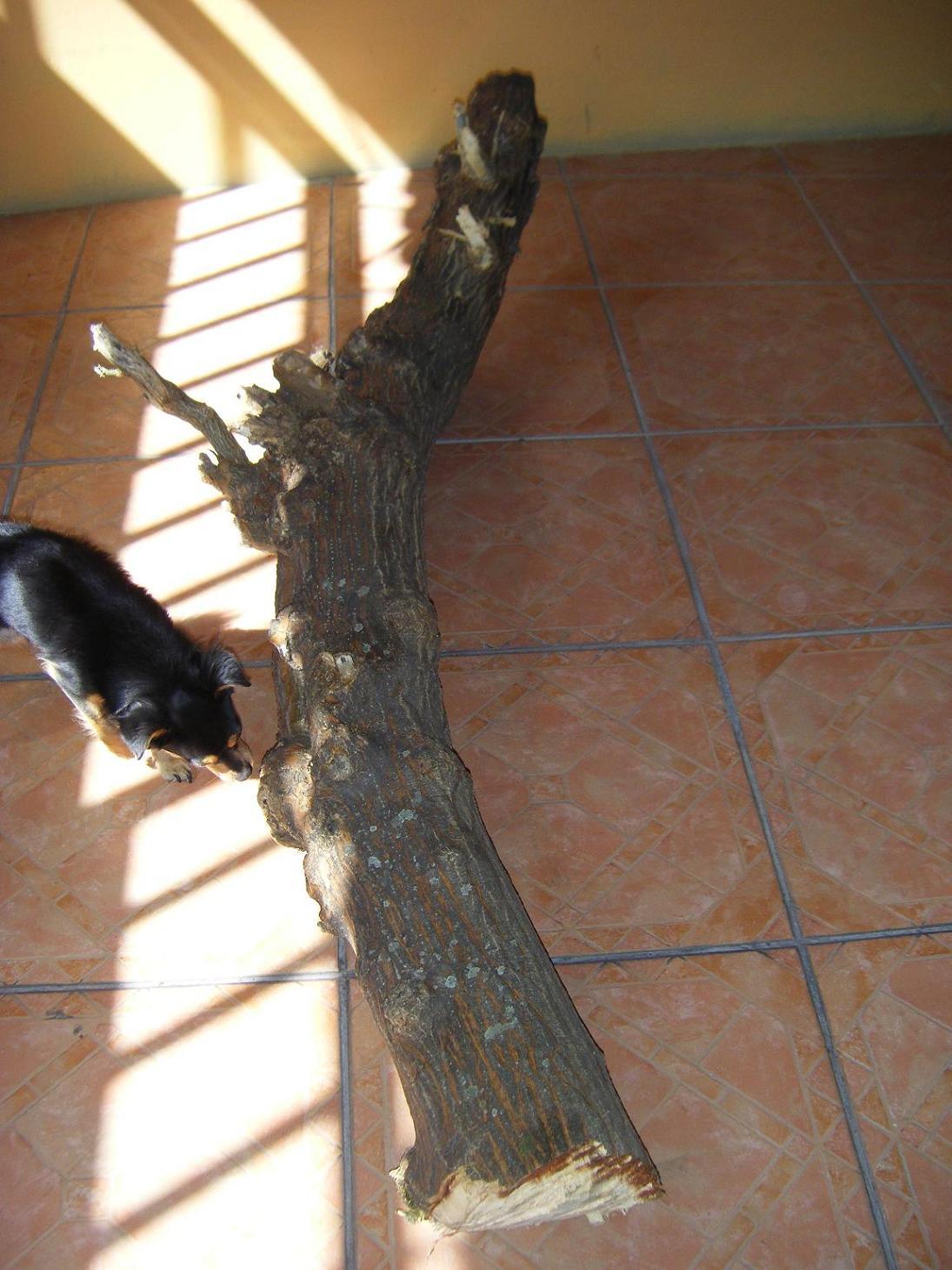 Tronco ideas para decorar un tronco en el jard n for Jardines con piedras y troncos