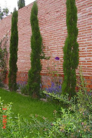 El jard n de remo p gina 2 foro de jardines dise o for Jardin cipres