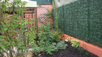 Fotos de mi jard n lo que he hecho dadme opiniones for Como quitar la mala hierba del jardin