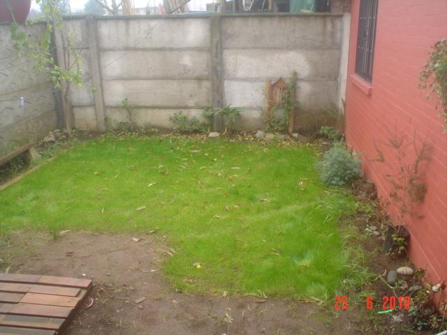 Ayuda para arreglar mi jard n p gina 3 for Como hacer mi jardin