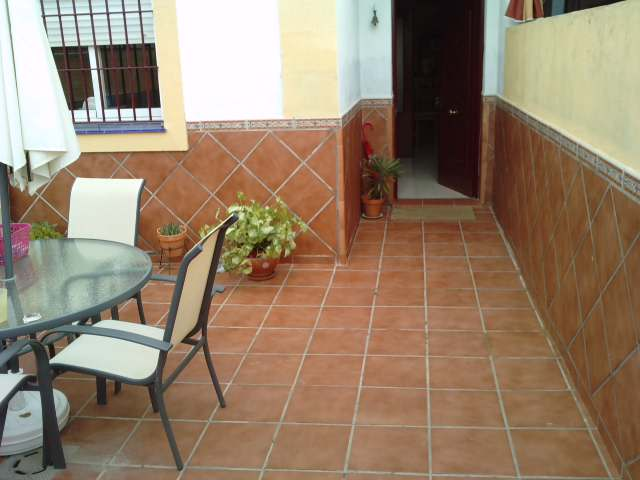 Ayuda para decorar mi patio for Como decorar mi patio con plantas